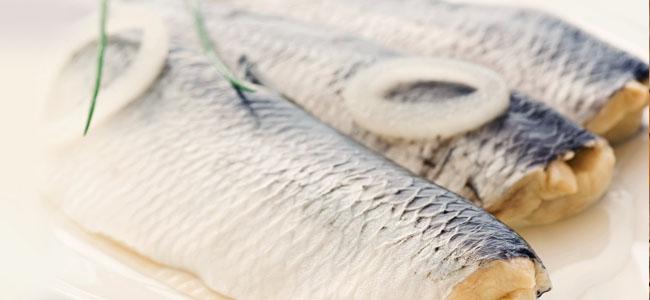 laminine omega fish oil