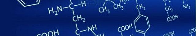 Laminine amino acids chain