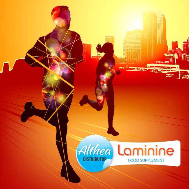 what is laminine